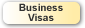 Information about Business Visas